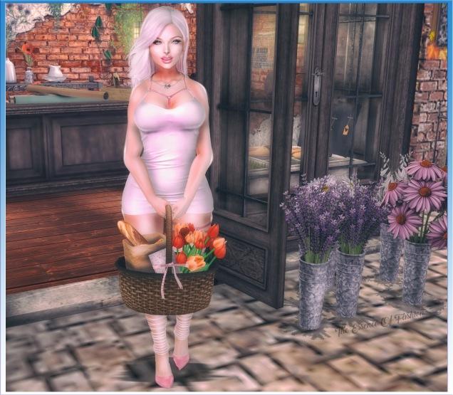 Snapshot_014 blog