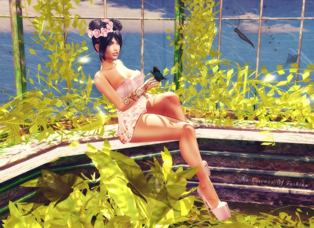 Snapshot_095 blog